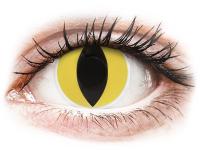 alensa.fr - Lentilles de Contact pas chères en ligne - Lentilles de contact Jaune Cat Eyes - ColourVue Crazy