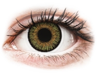 aa03b12b88fa3 FreshLook One Day Color Pure Hazel - correctrices (10 lentilles)