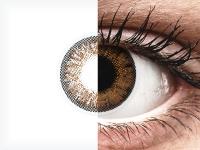 ColourVue One Day TruBlends Hazel - correctrices (10 lentilles)