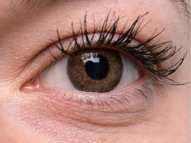 Brown on grey eye